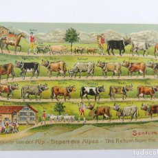Cartes Postales: ANTIGUA TARJETA POSTAL THE RETURN FROM THE ALPES. Lote 235486575