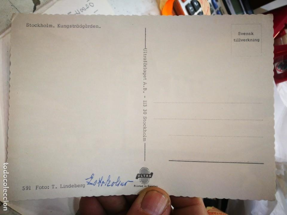 Postales: Postal Estocolmo Kungstradgarden - Foto 2 - 245982980