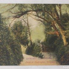 Postales: TORQUAY 1907 (INGLATERRA) - LANE AT COCKINGTON - WILLIAM HADDON, PUBLISHER, TIPTON - CIRCULADA. Lote 246103270