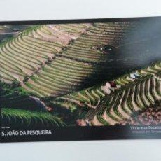Cartoline: POSTAL SÃO JOÃO DA PESQUEIRA VIÑAS EN TERRAZAS TRÁS-OS-MONTES PORTUGAL TURISMO. Lote 264787769