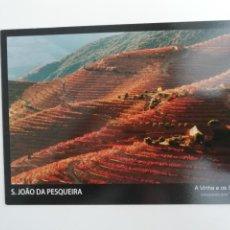 Cartoline: POSTAL SÃO JOÃO DA PESQUEIRA VIÑAS EN TERRAZAS TRÁS-OS-MONTES PORTUGAL TURISMO. Lote 264787789