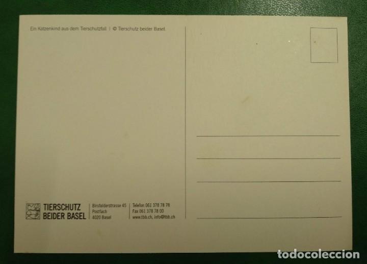 Postales: TARJETA SIN CIRCULAR SUIZA. TIERSCHUTZ BEIDER BASEL. - Foto 2 - 268477509