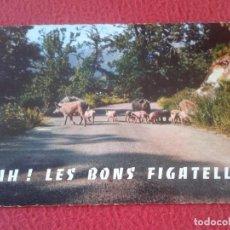 Postales: POSTAL CARTE POSTALE FRANCIA FRANCE CORSE CÓRCEGA CERDOS COCHINOS PIGS PORKS PORCS BONS FIGATELLI.... Lote 288544088