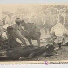 Postales: ANTIGUA FOTOGRAFIA ORIGINAL DE LA ROMERIA DE SIDI YEL EN BENI ZEYEL (MARRUECOS) AÑO 1926 - SACRIFICI. Lote 4484373