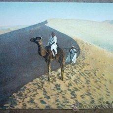 Cartes Postales: POSTAL ANTIGUA - 915- AU DÉSERT. Lote 25822049