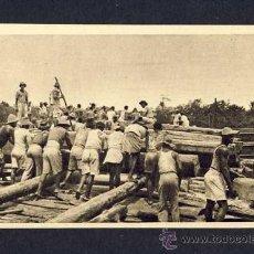 Postales: POSTAL DE GUINEA ESPAÑOLA: EXPLOTACION DE MADERAS DEL RIO UTONDE (HAUSER Y MENET NUM.20) (ANIMADA). Lote 9446009