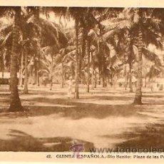 Postales: POSTAL GUINEA ESPAÑOLA RIO BENITO PLAZA DE LAS PALMERAS. Lote 9981784
