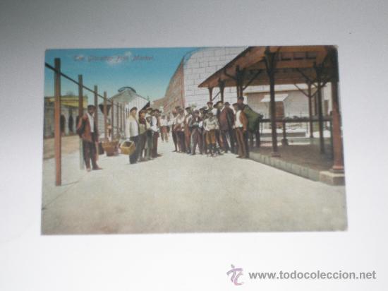 THE GIBRALTAR FISH MARKET . EDIC. BENZAQUEN & CO . SIN CIRCULAR . POSTAL COLOREADA (Postales - Postales Temáticas - Ex Colonias y Protectorado Español)