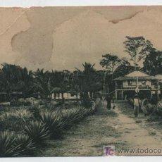 Postales: GUINEA CONTINENTAL. CONCESIÓN IZAGUIRRE Y CIA.EN RÍO BENITO.PUBLICIDAD PABELLÓN COLONIAL E.I.A.1929. Lote 19014987