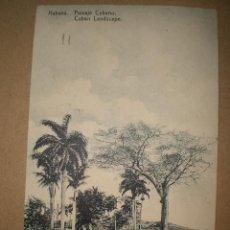 Postales: HABANA..- PAISAJE CUBANO.. Lote 27178332