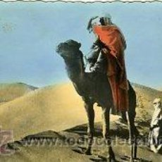 Postales: AAIUN (SAHARA ESPAÑOL).-ESCENAS DEL SAHARA.- EDICIONES ARRIBAS Nº 6.- FOTOGRÁFICA. Lote 28378327