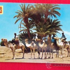 Postales: SAHARA TIPICO - CARAVANA DE MEHARISTAS. Lote 28856362