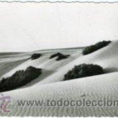 Postales: AAIUN (SAHARA ESPAÑOL).- DUNAS.- EDICIONES GUERRERO Nº 407.- FOTOGRÁFICA.. Lote 29456386