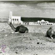 Postales: AAIUN (SAHARA ESPAÑOL).- CAMELLOS E IGLESIA.- Nº 402, SIN EDITOR.- FOTOGRÁFICA.. Lote 29486791