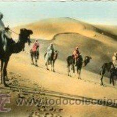 Postales: AAIUN.- ESCENAS DEL SAHARA.- TIENE SELLO DEL ARCHIVO DE POSTALES ARRIBAS Nº 102 .- FOTOGRÁFICA. Lote 30548263