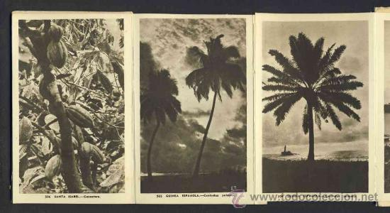 Postales: Carnet desplegable con 12 postales de GUINEA ESPAÑOLA. Serie 1 (Heliotip. Artist.) (ver fotos adic.) - Foto 3 - 32793612