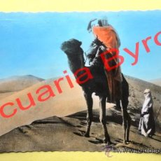 Postales: ESCENAS DEL SÁHARA. CIGOGNE. Lote 38365813