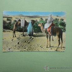 Postales: TIPOS MARROQUÍES A LA VISTA DE LAS PALMERAS. CIGOGNE. Lote 38368416