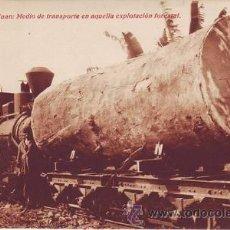 Postales: GUINEA. CABO SAN JUAN: MEDIO DE TRANSPORTE EN AQUELLA EXPLOTACIÓN FORESTAL.. Lote 38754165