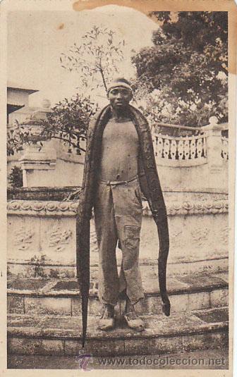 GUINEA ESPAÑOLA, UN INDIGENA CON UNA SERPIENTE BOA, EDITOR: HAUSER Y MENET Nº 11 (Postales - Postales Temáticas - Ex Colonias y Protectorado Español)