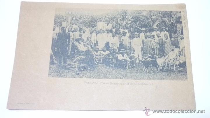 GUINEA ESPAÑOLA. FERNANDO POO. BRACEROS DE LA FINCA MONTSERRAT (Postales - Postales Temáticas - Ex Colonias y Protectorado Español)