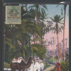 Postales: MARRUECOS - CAMPAMENTO ÁRABE EN EL OÁSIS - P15642. Lote 55089074