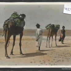 Postales: SAHARA ESPAÑOL - VER REVERSO -( 42.915). Lote 56395629