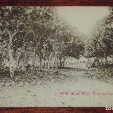 Postales: FERNANDO POO (GUINEA ECUATORIAL) FINCA DE CACAO, THOMAS SIN CIRCULAR. Lote 88762240