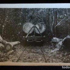 Postales: FOTO-POSTAL COMPAÑIA DE COLONIZACION AFRICANA. Lote 111723847