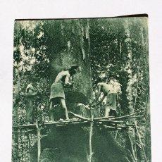 Postales: GUINEA CONTINENTAL- EXPOSICION IBERO-AMERICANA, SEVILLA-1929- HACHEROS BUGEBAS TRABAJANDO. Lote 112986063
