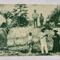 Postales: GUINEA CONTINENTAL- EXPOSICION IBERO-AMERICANA, SEVILLA-1929- UN OKUME. Lote 112987403