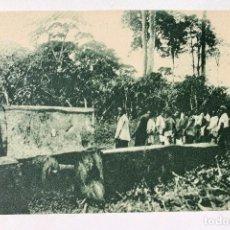 Postales: GUINEA CONTINENTAL- EXPOSICION IBERO-AMERICANA, SEVILLA-1929- EXPLOTACIONES FORESTALES. Lote 112987787