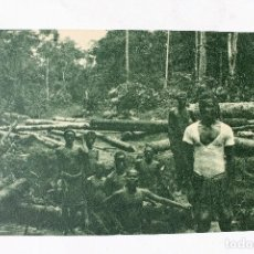 Postales: GUINEA CONTINENTAL- EXPOSICION IBERO-AMERICANA, SEVILLA-1929- UN DESBOSQUE. Lote 112988863