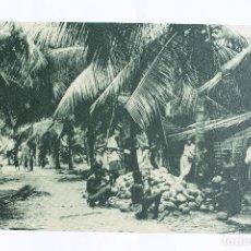 Postales: GUINEA CONTINENTAL- EXPOSICION IBERO-AMERICANA, SEVILLA-1929- UNA FINCA DE COCOS.. Lote 113250719