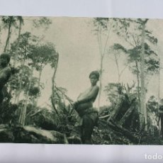 Postales: GUINEA CONTINENTAL- EXPOSICION IBERO-AMERICANA, SEVILLA-1929- MUJERES INDIGENAS EN UN DESBOSQUE.. Lote 113256443