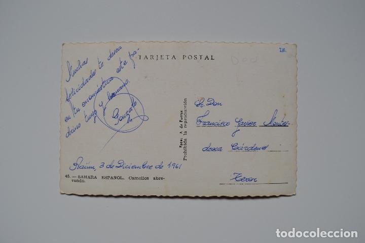 Postales: POSTAL ANTIGUA. SAHARA ESPAÑOL. CAMELLOS ABREVANDO. EDITA A. DE PURRAS. - Foto 2 - 119935775