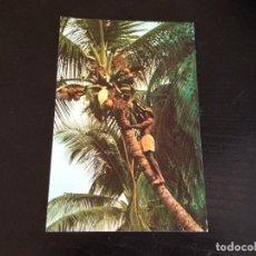 Postales: SANTA ISABEL -FERNANDO POO,. Lote 128244287