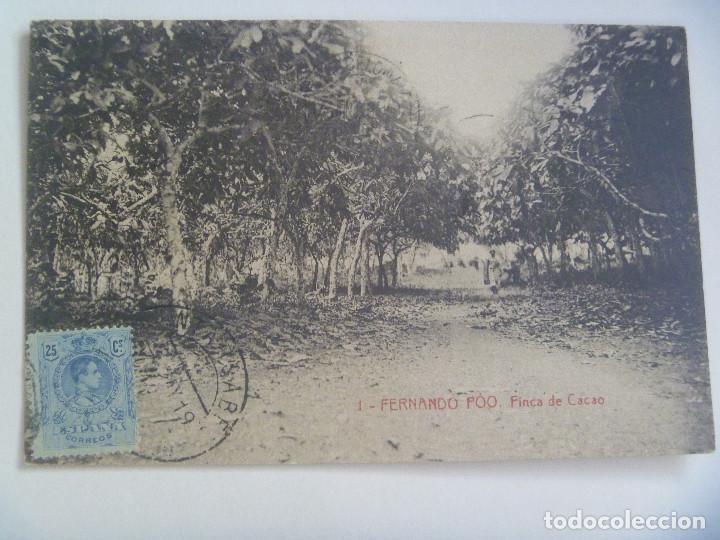 POSTAL DE FERNANDO POO ( GUINEA ESPAÑOLA ): FINCA DE CACAO . CIRCULADA CON SELLO DE ALFONSO XIII (Postales - Postales Temáticas - Ex Colonias y Protectorado Español)