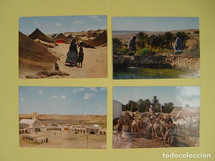 LOTE DE 4 TARJETAS POSTALES (1960'S) SAHARA ESPAÑOL ¡SIN CIRCULAR! ¡ORIGINALES! (Postales - Postales Temáticas - Ex Colonias y Protectorado Español)