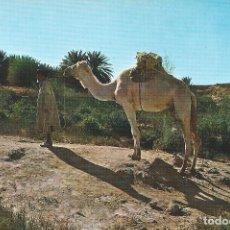 Postales: AAIUN. SAHARA ESPAÑOL (AOE). MESEIED, CAMINO DEL OASIS. ED. FISA. Lote 139546134