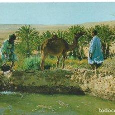 Postales: SAHARA ESPAÑOL. EL OASIS DE MESEIED. ED. FOT. PHILIPPE MARTIN. Lote 139552830