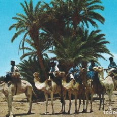 Postales: N. 23 SAHARA TIPICO. CARAVANA DE MEHARISTAS. EDICIONES FISA. BARCELONA. Lote 139555134