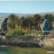 Postales: SAHARA ESPAÑOL. EL OASIS DE MESEIED. ED. FOT. PHILIPPE MARTIN. Lote 139564726