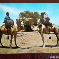Postales: SAHARA TIPICO. MEHARISTAS, 1967.. Lote 145890402