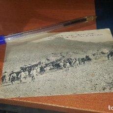 Postales: 17 CAMPAÑA DE 1911 A 1912 MELILLA - ISHAFEN, CAMPAMENTO DE CABALLERIAS.., ED. RIF . Lote 171295569