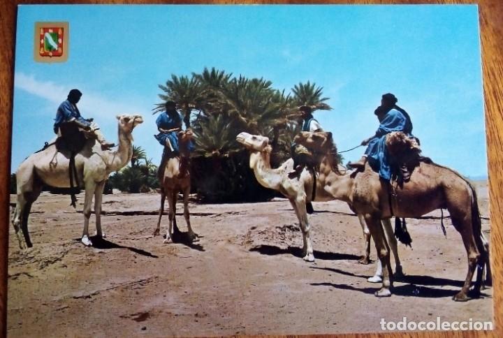 SAHARA. CARAVANA DE MEHARISTAS. SIN CIRCULAR. (Postales - Postales Temáticas - Ex Colonias y Protectorado Español)