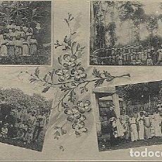Postales: X123044 FERNANDO POO GUINEA ESPAÑOLA VISTIENDO COLEGIALES SANTA ISABEL, BASILE Y PLATACIONES PLATANO. Lote 194217607