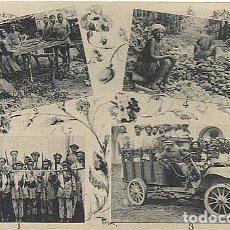 Postales: 123046 FERNANDO POO GUINEA ESPAÑOLA DESPUES CAZA ANTILOPAS ARDILLAS Y PUERCOS ESPINES, CAMION BANAPA. Lote 194217943