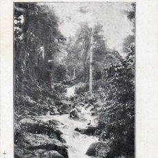 Postales: POSTAL GUINEA ESPAÑOLA (FERNANDO PÓO) CASCADA DEL RÍO SAN LUIS, HACIENDA MONTSERRAT- SERIE B. NÚM. 4. Lote 211643044