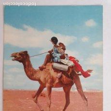 Cartes Postales: SAHARA ESPAÑOL - NÓMADA - LMX - SHE. Lote 214714463